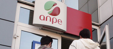 Anpe_2